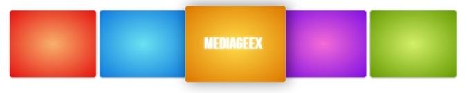 MediaGeeX Logo